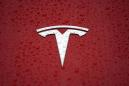 Tesla gets court approval to clear forest for German Gigafactory