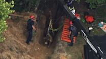 Raw: Bull Rescued From Georgia Well
