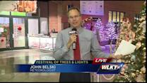 Festival of Trees and Lights returns to Slugger Field