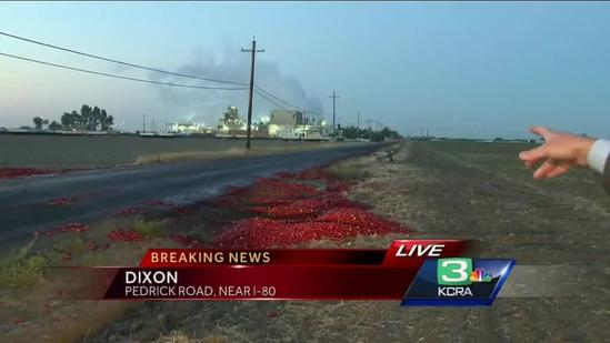 Truck carrying tomatoes overturns in Dixon
