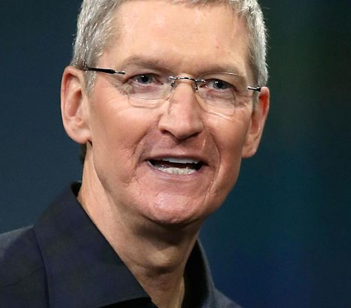 Apple CEO Tim Cook: This could be the size of a 'Fortune 100 company' by 2017