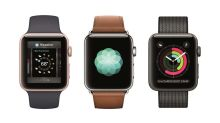 How Many Watches Did Apple Sell Last Quarter?