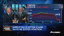 Pisani: Icahn not terribly excited about the markets
