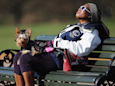 People Need to Calm Down About Their Pets and the Solar Eclipse