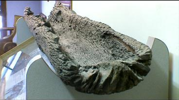 Experts: Lake Minnetonka Canoe Is 1,000 Years Old