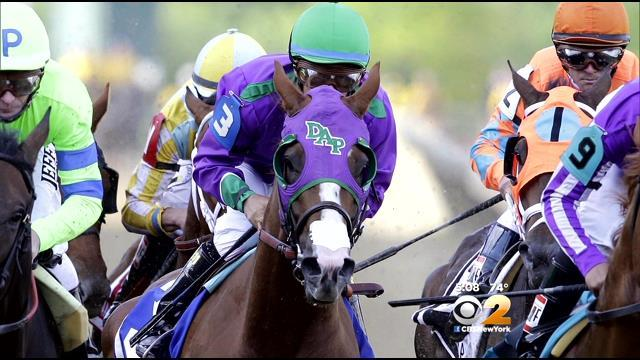 California Chrome Visits Paddock At Belmont; Timed Workout Saturday