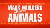 Mark Wahlberg Talks to Animals