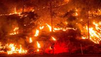 Raging Wildfires Cause State of Emergency in California; Thousands Evacuated