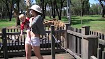 Giraffe Steals Girl's Purse