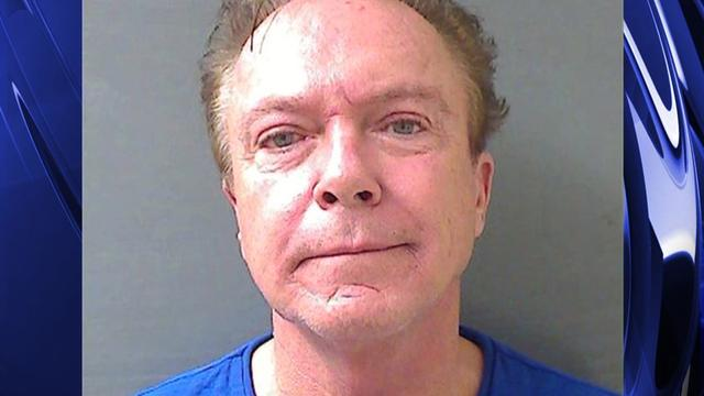 David Cassidy free on bail following DWI arrest