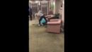 Watch: Video Shows Vicious Fight Between Florida Women