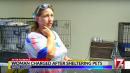 Woman Who Took In Pets During Florence Faces Charges For Allegedly Giving Them Medicine