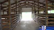 Bellaire FFA students hit by thieves