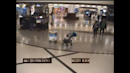Woman 'who tried to kidnap two children' in Atlanta airport arrested