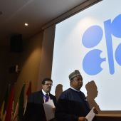 Oil price rally slows on doubts over OPEC output deal