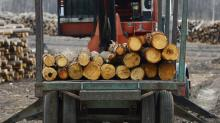 Canadian leader responds to lumber tariffs imposed by the US