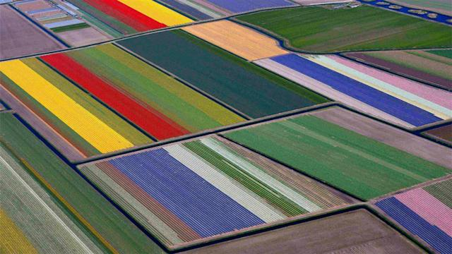 Photos of the Day – Gardens of Europe From the Air