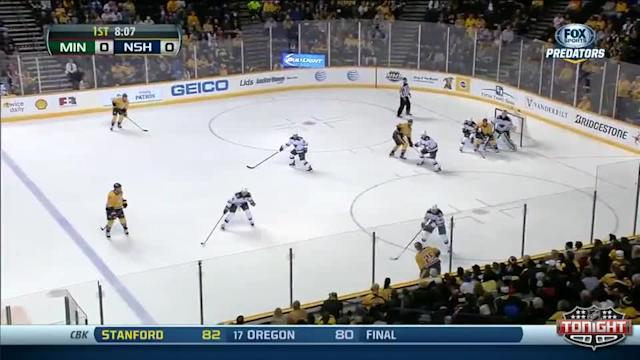 Minnesota Wild at Nashville Predators - 01/12/2014