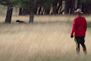 Mountie chasing a bear is the most Canadian thing ever