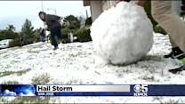 Winter Storm Dups Hail On San Jose Neighborhood