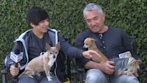 Cesar Millan and Son's Doggie Dos and Don'ts