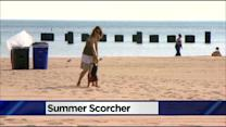 Summer Scorcher Brings Ideal Beach Weather