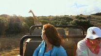 Caught on Tape: Frightening Footage of Giraffe Attack