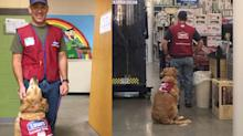 A Lowe's Store in Texas Hired a Disabled Veteran – And His Service Dog