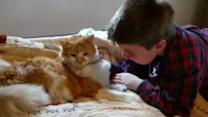 Incredible Reunion for Boy, Missing Cat