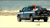 Woman Sunbathing Run Over By County Vehicle On Venice Beach