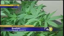 Tulare Co Supervisors against bill to regulate medical marijuana