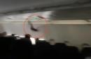 Wild footage captures bat flying around Spirit Airlines plane midflight