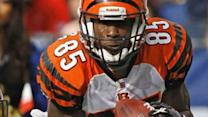 Chad Johnson Sentenced to Jail for Courtroom Tush Tap